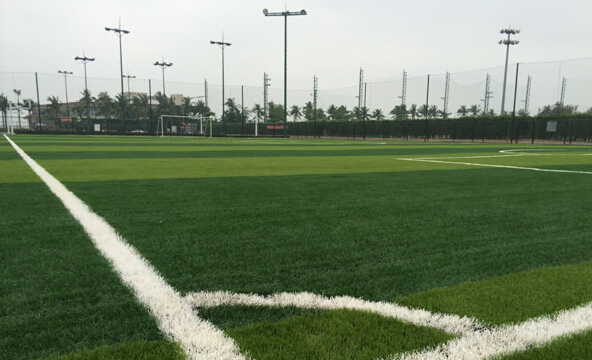 海口世纪公园足球场升级改造完成 免费开放一周