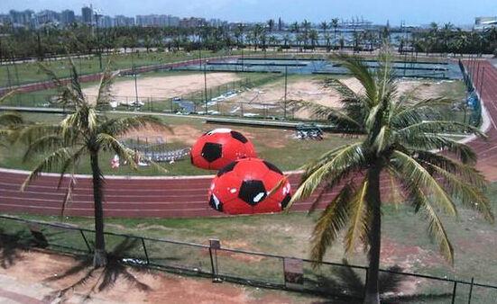 """小心""""鲸鱼""""!威马逊曾损坏海口多个足球场"""