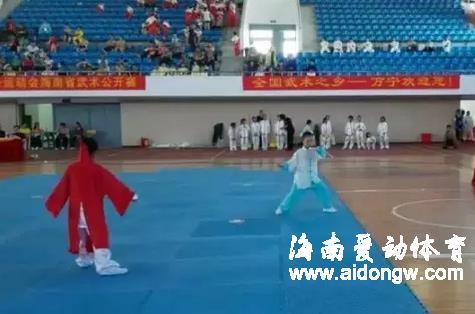 海南省武术协会秘书长张克坚:海南武术近三年进步巨大