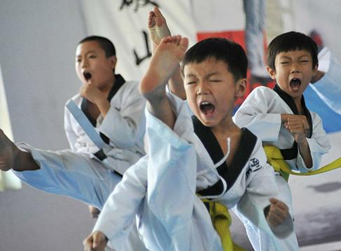 2015年海南省少年跆拳道锦标赛将于11月7日在海口举行