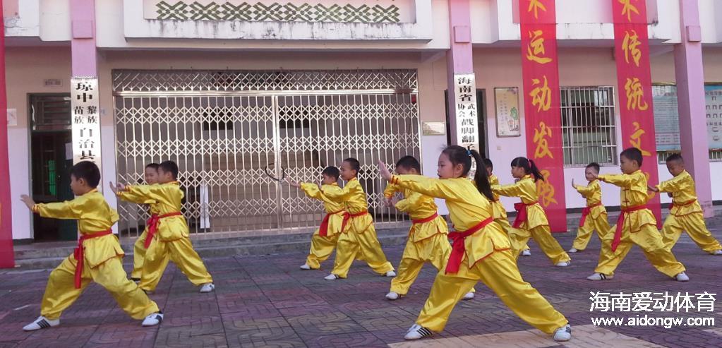 【武术】海南武术再添新丁 戳脚翻子拳研究会在琼成立