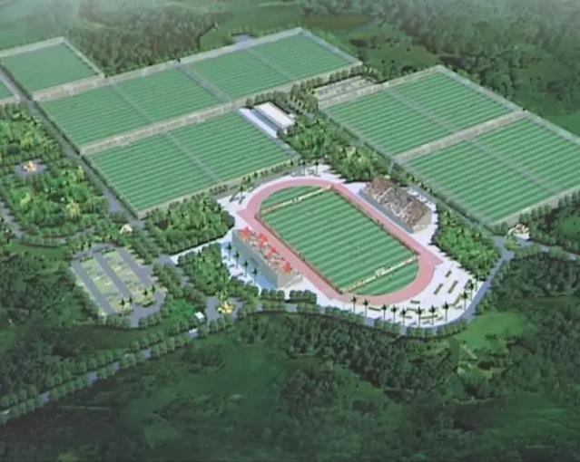 海口打造南方足球训练基地 计划总投资约1亿元建20片标准天然草足球场