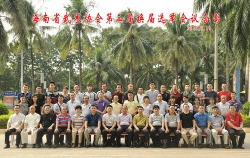 海南省武术协会