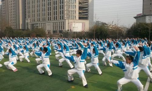 中国体育报:海南武协打造社会化协会  与爱动体育结缘推广武术进校园
