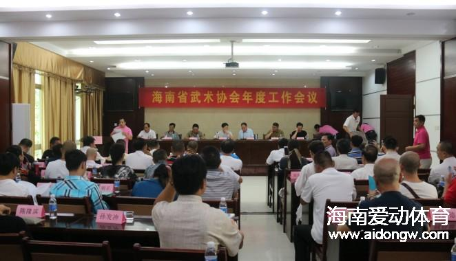 2016年海南省武术协会年度工作会议