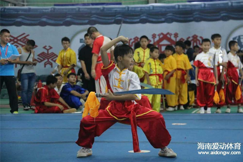 2016年海南省全民健身运动会武术公开赛落幕 四大亮点凸显赛事成功