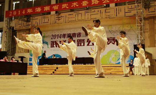 屯昌举办传统武术邀请赛 10支武术队同台切磋技艺