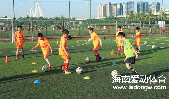2017海南虎跃青训中心暑期培训班开始报名啦 快来加入我们吧