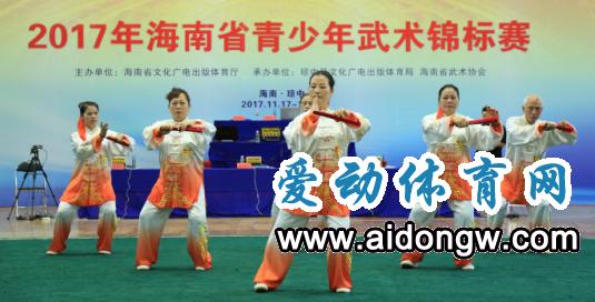 2017海南省青少年武术锦标赛在琼中落幕|演绎一场武林盛宴