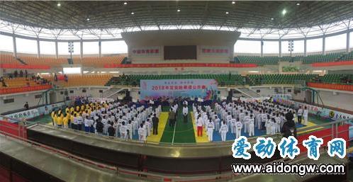 """2018定安跆拳道公开赛圆满落幕 300名选手""""拳""""动精彩"""