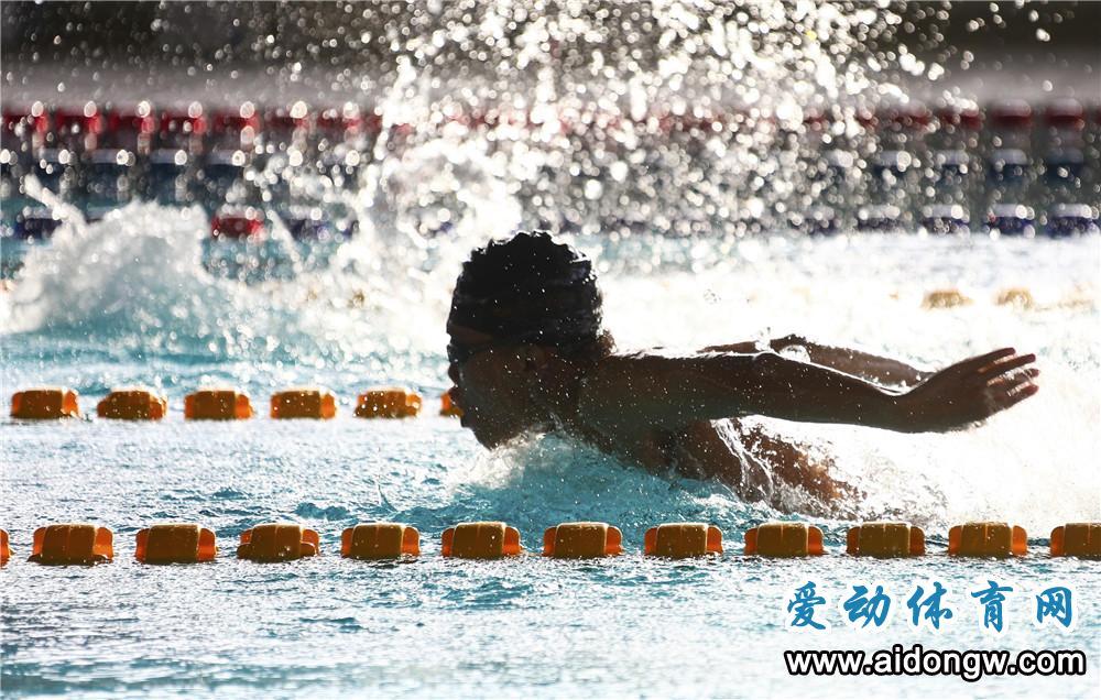 【图集】海南省第五届运动会游泳比赛