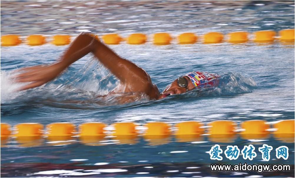 省运会游泳比赛如火如荼进行 三亚代表队斩获四枚奖牌