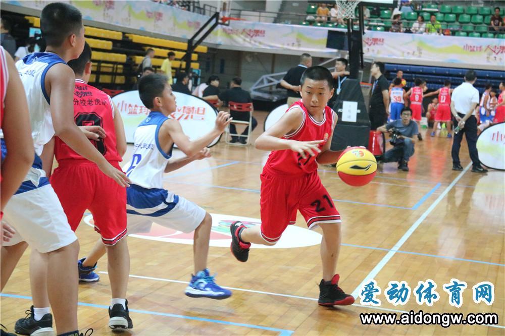 中国小篮球联赛华南赛区收官 省篮协:小球员打出了海南特色