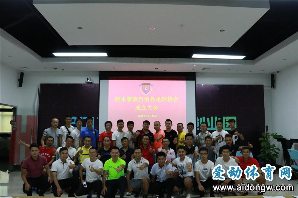 陵水足球协会正式成立 为体育事业增添新活力