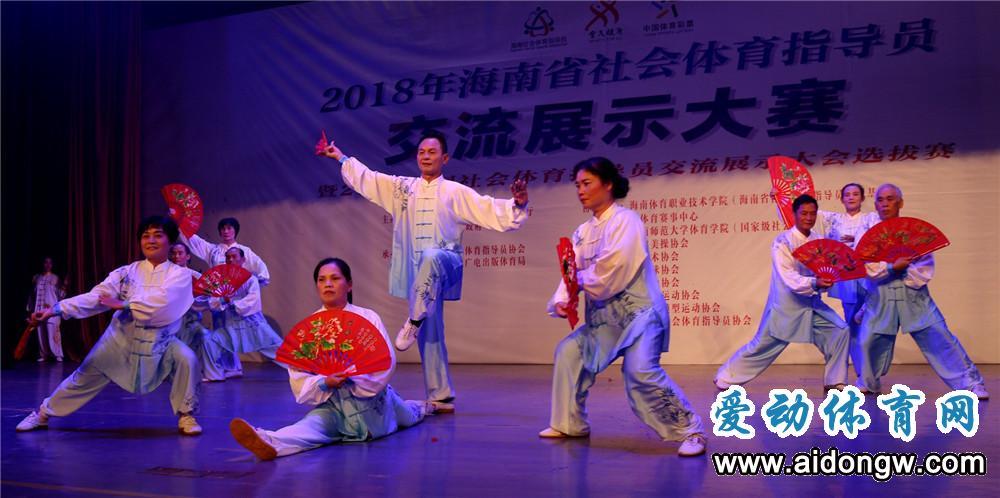 【视频】2018海南省社会体育指导员交流展示大赛