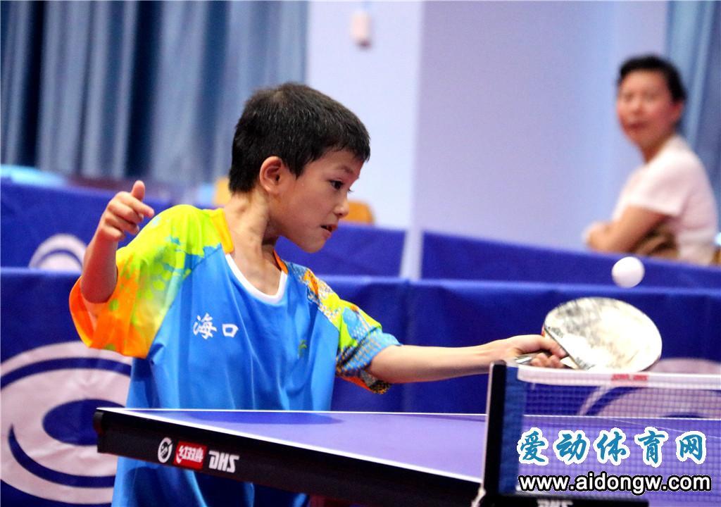 8月来乐东打乒乓球!2019海南省业余乒乓球公开赛开始报名啦