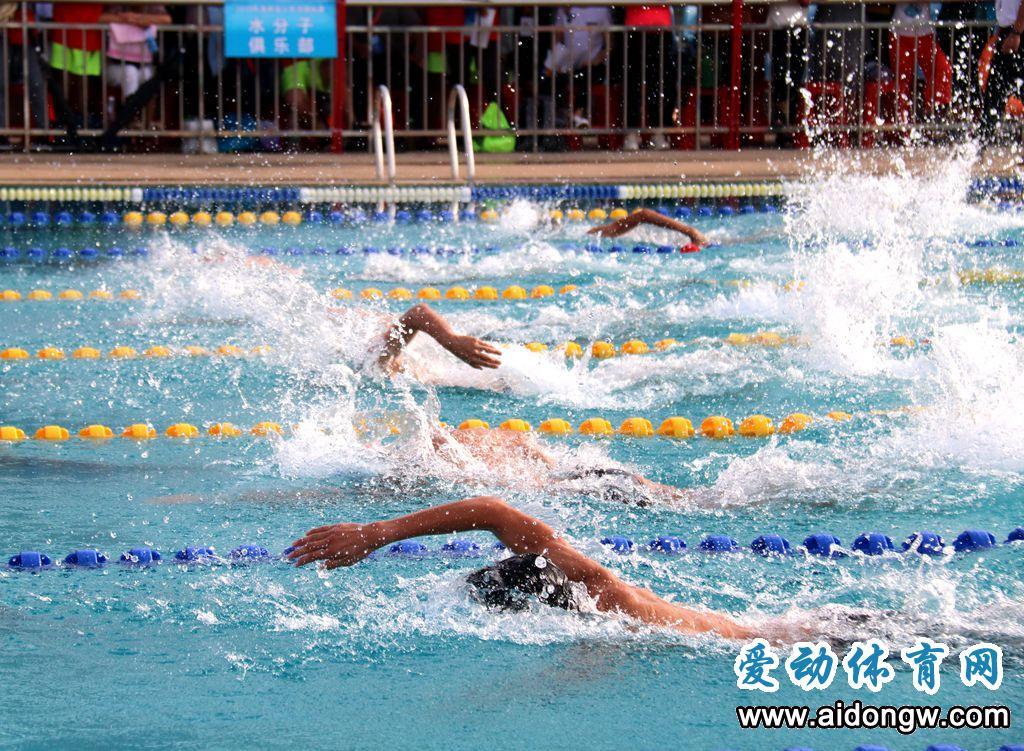 少年游泳好手大比拼!2019年海南省少年游泳锦标赛陵水开赛