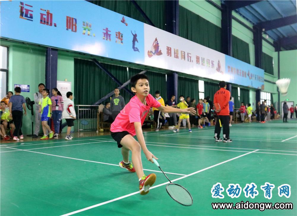 海南省少年羽毛球锦标赛24日将激战白沙 12个市县近300名运动员报名参赛