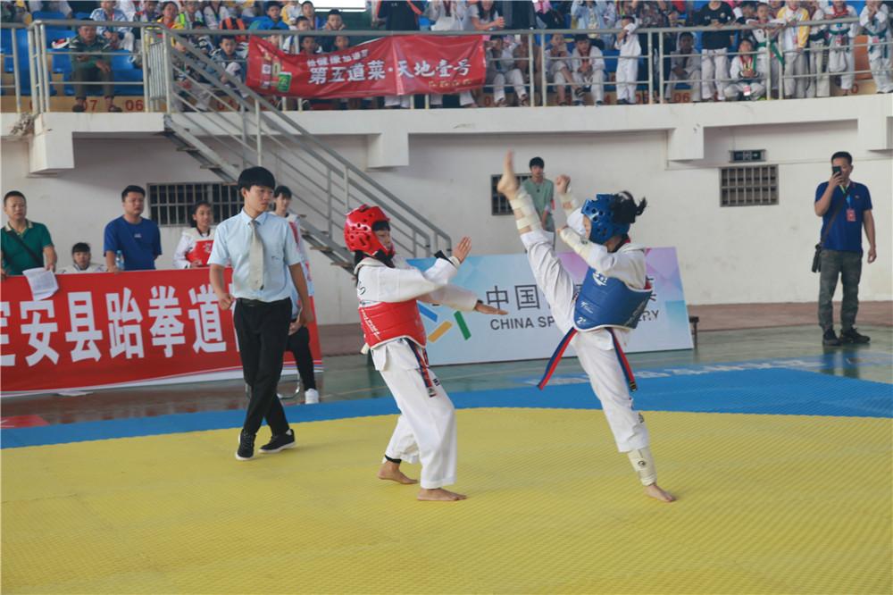 """""""体彩杯""""第二届定安跆拳道公开赛成功举办"""