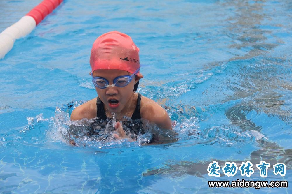 【视频】2019海南省青少年U系列游泳公开赛海口落幕
