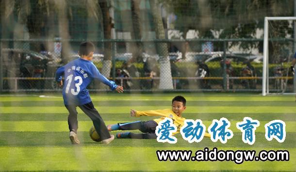 组图 | biwei必威体育备用网站体育场馆全面复苏 生意盎然