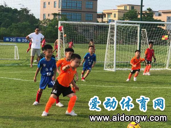省青少年足球冠军联赛收官 w优德88w虎跃队获1金1银1铜
