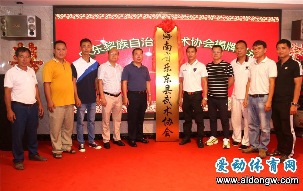 乐东武术协会挂牌成立,全省武术座谈会达成两项共识