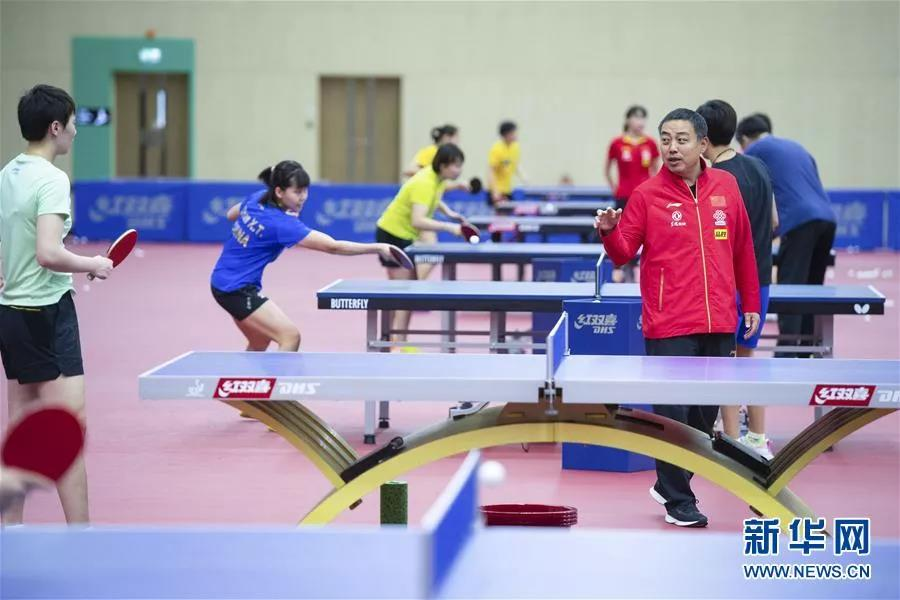 国乒吹响集结号,将在biwei必威体育备用网站陵水备战东京奥运会