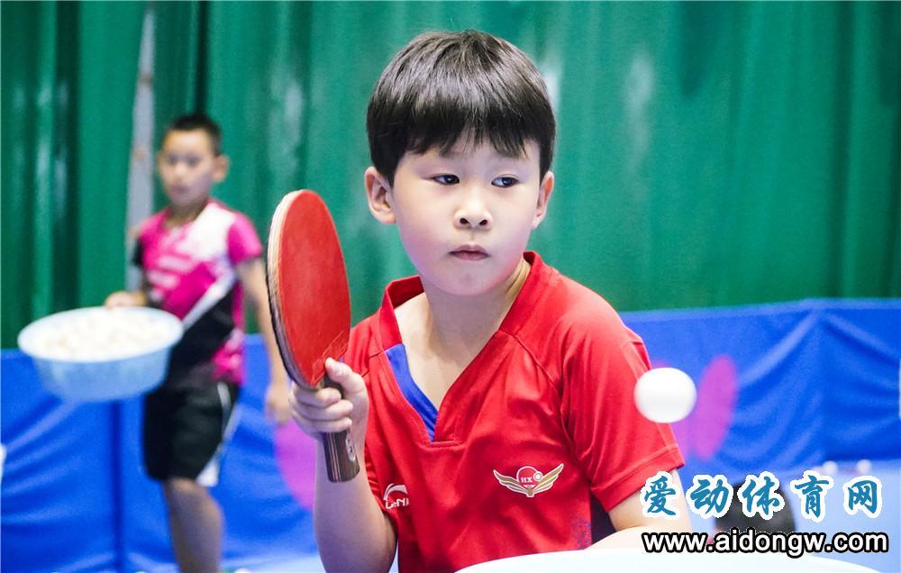 国家乒乓球青少集训队和少儿集训(第一期) 海南省选拔赛9月26日举行