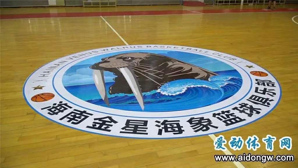 海南海象篮球队将征战!2020年NBL联赛10月25日揭幕