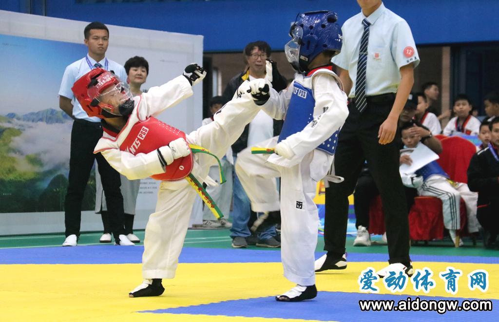 """2020年""""白沙杯""""粤桂琼跆拳道公开赛白沙开赛,三省区近500名选手参与"""